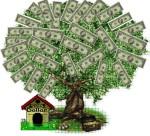 Pengar växer inte på träd