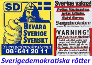 Sverigedemokratiska rötter