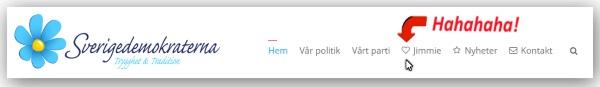 Sverigedemokraterna älskar Thorfinn Rumpsmiskare